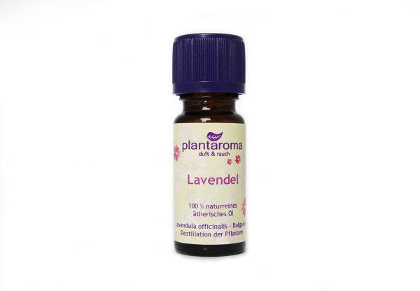 Lavendel, 100 % naturreines ätherisches Öl