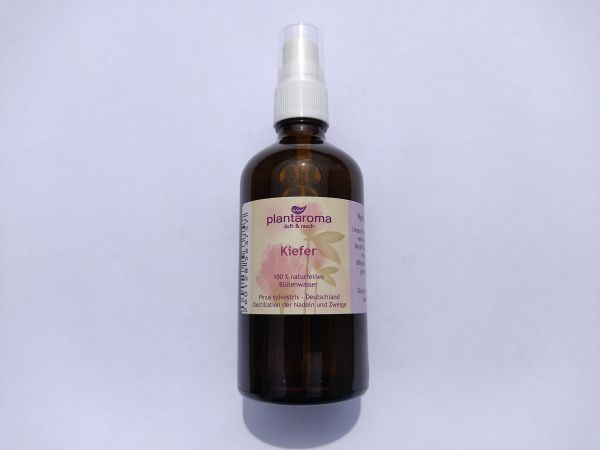 Kiefer-Hydrolat 100 ml